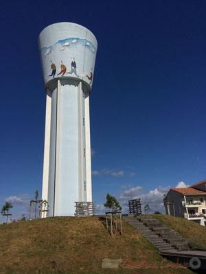 Paule Adeline a peint une œuvre de Daniel Le Saux sur 12 mètres de haut et à 40 mètres du sol, sur le château d'eau du Sablais