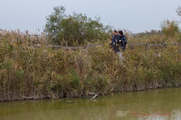 Randonneurs des marais. Touristes et autochtones fréquentent tout au long de l'année la réserve naturelle régionale de Scamandre, Vauvert