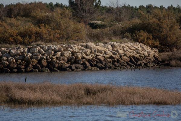 Entrée du chenal du port d'Audenge, Domaine de Graveyron, espace naturel sensible de Gironde