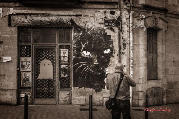 """""""Le chat aurait-il englouti les spectres ?"""" Quartier Saint-Michel, Bordeaux. Mercredi 24 juin 2020. Photographie © Christian Coulais"""