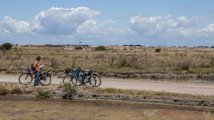 Balade à bicyclette dans les marais salants de l'Île de Noirmoutier entre l'Epine et Noimoutier en l'Île, Vendée, Pays de la Loire