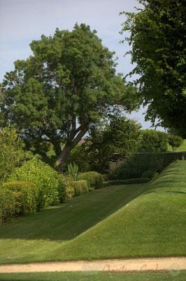 Château d'Yquem, le parc