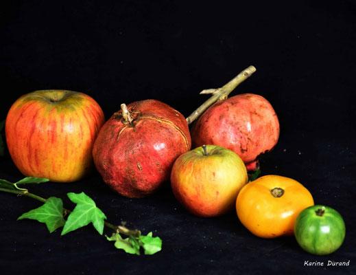 Nature morte végétale, Atelier Photo Numérique de l'AMAC. 09/11/2019 Photographie © Karine Jourdan-Durand