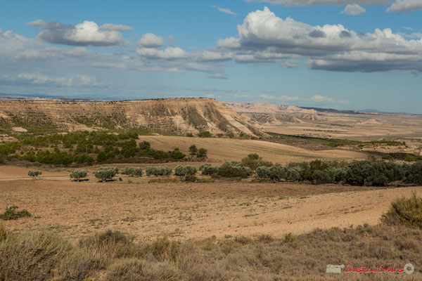 Magnifique panorama des Bardenas Reales (Blanca Alta) / Magnífico panorama de las Bardenas Reales (Blanca Alta), Parque natural de las Bardenas Reales, Navarra