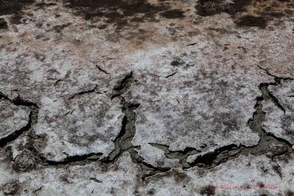 Craquellement de l'argile, dans les marais salants de l'Île de Noirmoutier entre l'Epine et Noimoutier en l'Île, Vendée, Pays de la Loire