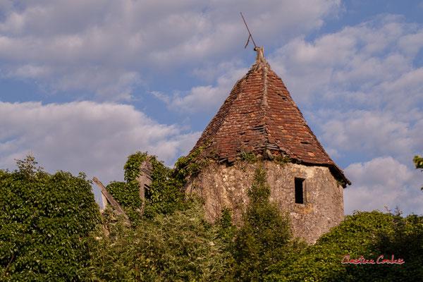 Tour octogonale du XVème ou XVIème siècle du Château de Montignac, sous le lierre, Cénac, Gironde. Samedi 16 mai 2020. Photographie : Christian Coulais