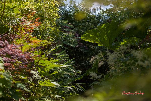 Le jardin miroir de Chantal COLLEU-DUMOND. Prés de Goualoup, Domaine de Chaumont-sur-Loire. Lundi 13 juillet 2020. Photographie © Christian Coulais