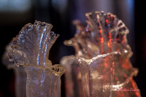 Tige florale de Sarracenia, plante carnivore. Création de Sébastien Rideau, le Ras d'eau, le Verdon-sur-mer. Samedi 3 juillet 2021. Photographie © Christian Coulais