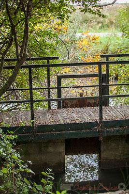 Travail de l'homme, pont piéton et son écluse mécanique. Réserve naturelle régionale de Scamandre, Vauvert