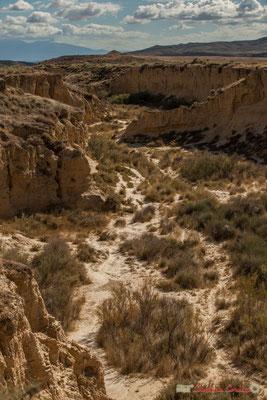 Bras à sec d'amont en aval, Barranco de las Limas, Parque natural de las Bardenas Reales, Navarra