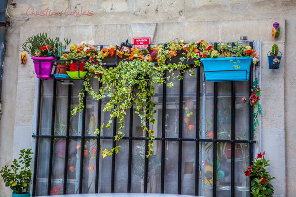 "64 Street art, ""Maison du bonheur"", Arles"