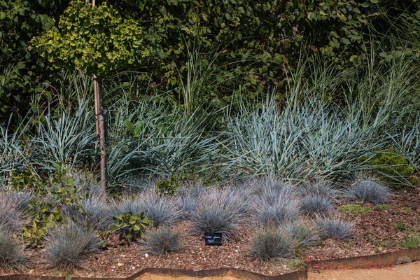 L'ivresse des elfes; Florence Guin, paysagiste; Aurélie Gueuiffey, conceptrice de parcs et jardins; France