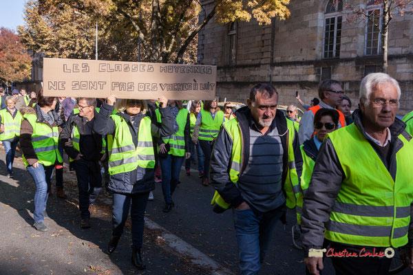 """""""Les classes moyennes ne sont pas des vaches à lait"""" Manifestation nationale des gilets jaunes. Cours d'Albret, Bordeaux. Samedi 17 novembre 2018"""