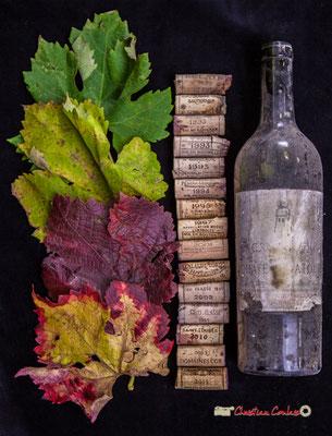 Nature morte aux multiples matériaux, Atelier Photo Numérique de l'AMAC. 09/11/2019 Photographie © Christian Coulais