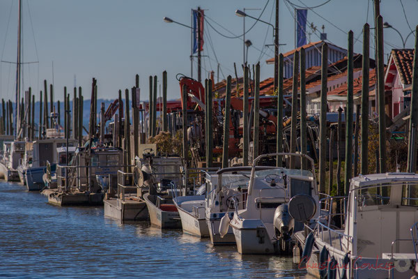 Bateaux à quai. Port d'Audenge, Gironde