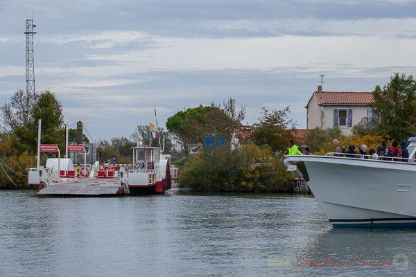 15h31 Le bateau Camargue propose une immersion avec la nature préservée, sa flore unique, sa faune riche d'oiseaux aquatiques, sans oublier la manade de taureaux et chevaux présentée par un gardian.