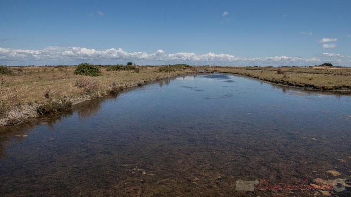 Marais salants de l'Île de Noirmoutier entre l'Epine et Noimoutier en l'Île, Vendée, Pays de la Loire