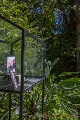 Les chasseurs de plantes de jardin; Claire Laeremans, paysagiste; Ellen Steenwegen, Katherine Engelen, architectes-paysagistes; Belgique. Mercredi 26 août 2015. Photographie © Christian Coulais