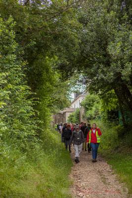 Chemin de Brice, Cénac. Randonnée pédestre Jazz360 2016, de Cénac à Quinsac