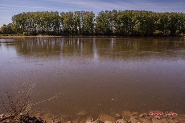 La Garonne, la rive gauche depuis Langoiran. Samedi 24 avril 2021. Photographie © Christian Coulais