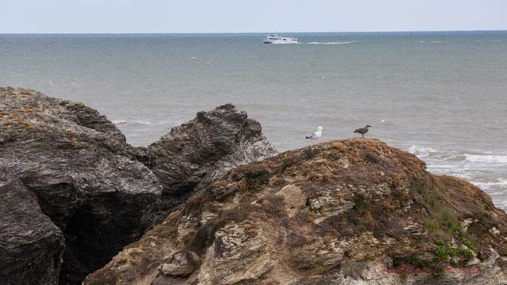 Vedette revenant de l'Île d'Yeu, la Corniche Vendéenne, Vendée, Pays de la Loire