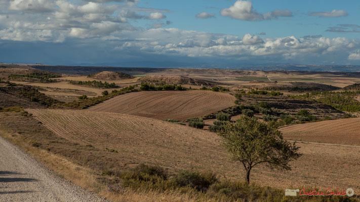 Magnifique panorama des Bardenas Reales (El Plano) / Magnífico panorama de las Bardenas Reales (El Plano), Parque natural de las Bardenas Reales, Navarra