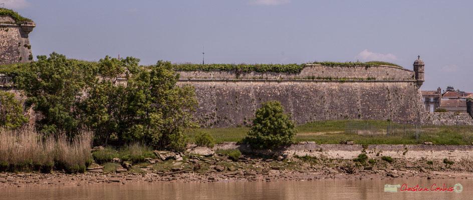 On peut y voir des côtes de lamentin, fossilisés, sous les murs de citadelle de Blaye, dans le calcaire de la roche. 06/05/2018