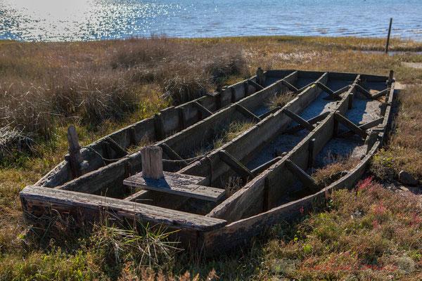 Barque abandonnée. Domaine de Certes-et-Graveyron, Audenge