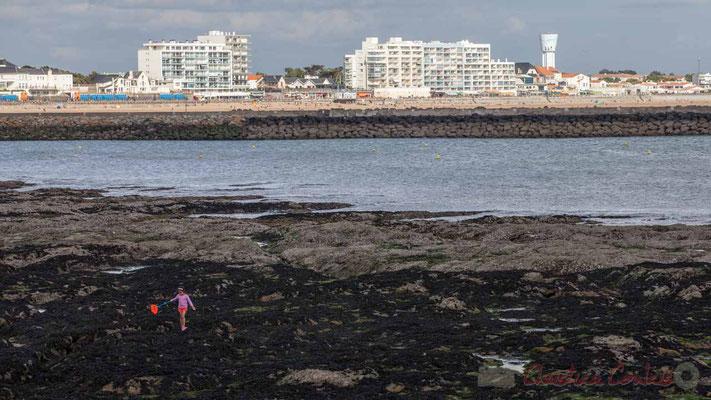 """""""Enfant seule pratiquant la pêche à pied 1"""", Corniche Vendéenne, Vendée, Pays de Loire"""