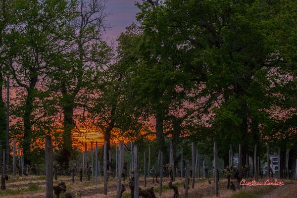 4/8 Coucher de soleil depuis Haut-Brignon, Cénac. Mardi 7 avril 2020. Photographie : Christian Coulais