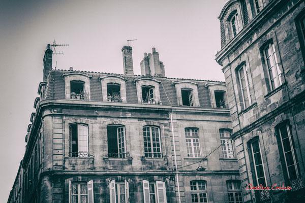 """""""La famille Cactaceae habite au dernier"""" Quartier Saint-Michel, Bordeaux. Mercredi 24 juin 2020. Photographie © Christian Coulais"""