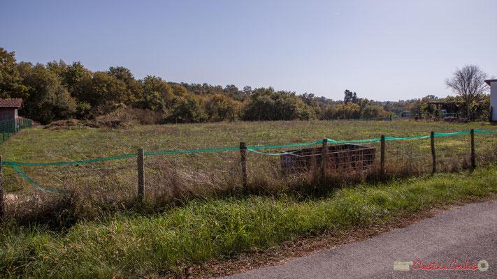 9 Côté est. Allée du Cloutet, Cénac, Gironde. 16/10/2017