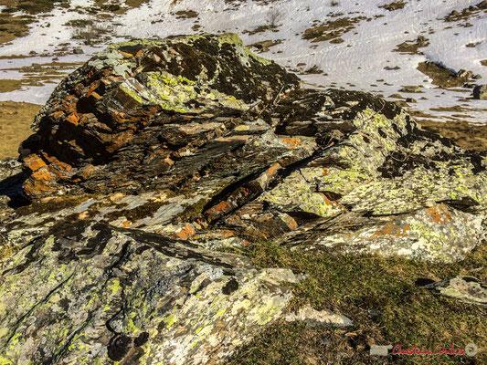 Roche et lichen. Le long du gave du Brousset, Soques, RD 134 bis, Laruns, Pyrénées-Atlantiques