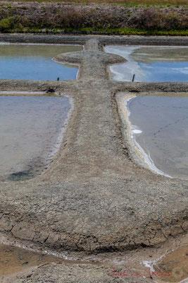 Digues et écluse entre les œillets des marais salants de l'Île de Noirmoutier entre l'Epine et Noimoutier en l'Île, Vendée, Pays de la Loire