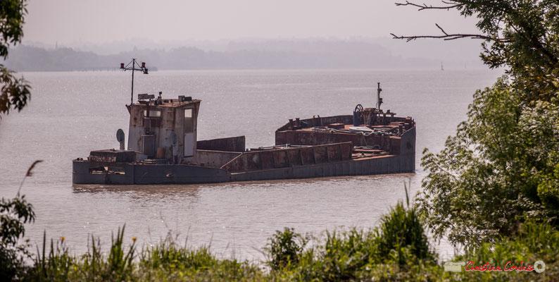 Grande épave de bateau, sur la rive Est. Parcours de découverte de la roselière de l'Île Nouvelle, Gironde. 06/05/2018