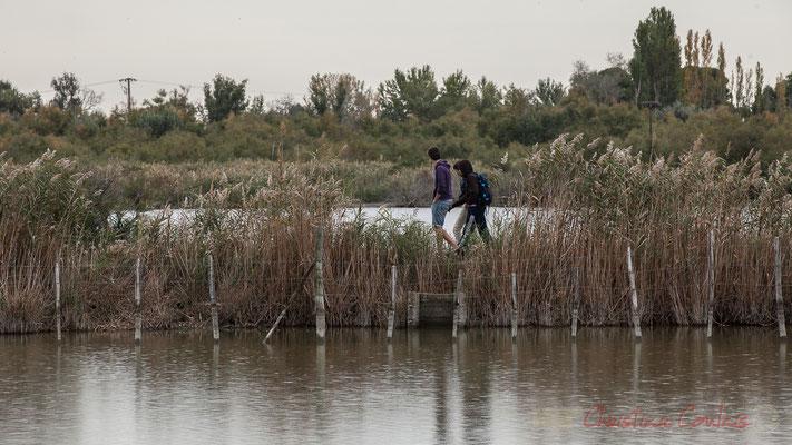 Promeneurs sur la digue. Réserve naturelle régionale de Scamandre, Vauvert