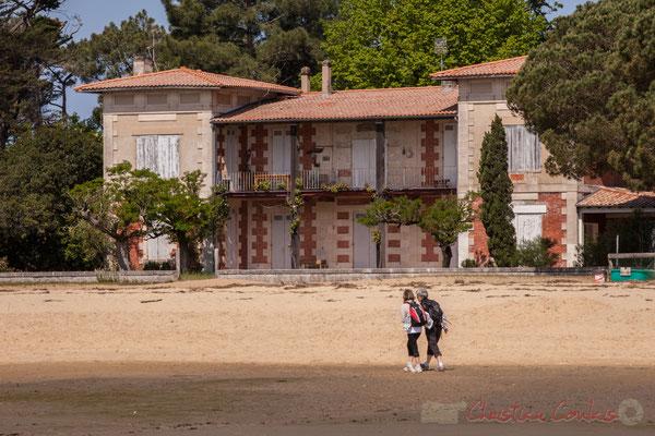 Grand Piquey, presqu'île de Lège-Cap Ferret, Gironde, Aquitaine
