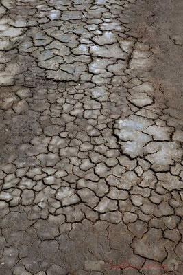 L'argile sèche dans les marais salants de l'Île de Noirmoutier entre l'Epine et Noimoutier en l'Île, Vendée, Pays de la Loire
