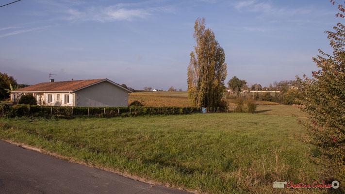 Prairie(s) pour pâturages ou agriculture de proximité. Avenue de Mons, Cénac, Gironde. 16/10/2017