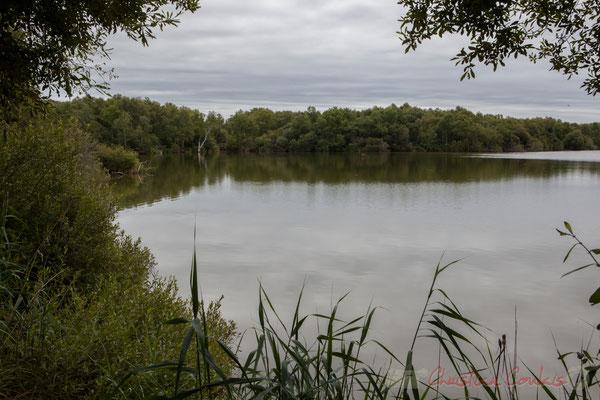 Lagune de Contaut, Espace Naturel Sensible de Gironde, Hourtin
