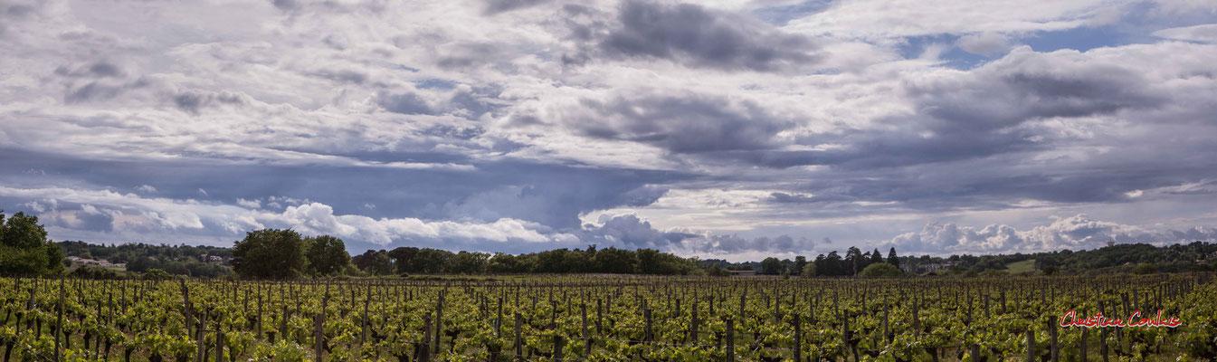 Ciels et nuages, panoramique 4+5, le Garde, Cénac. Photographie : Christian Coulais