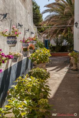 Entrée fleurie d'une habitation avec cour. Sangüesa, Navarra