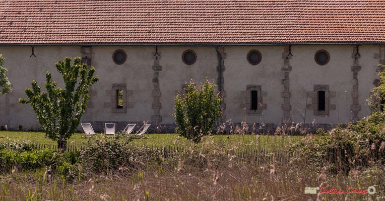 Pour venir décourvrir cette île : www.gironde.fr/nature. Visite de l'Île Nouvelle, Gironde. 06/05/2018