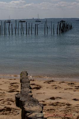 Le Canon, presqu'île de Lège-Cap Ferret, Gironde, Aquitaine