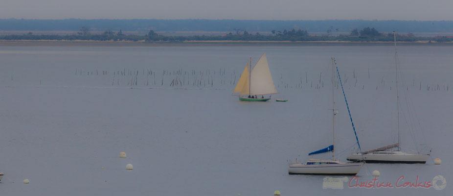 L'Île aux oiseaux depuis le village de l'Herbe, presqu'ïle du Cap Ferret, Gironde, Aquitaine