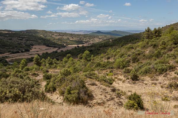 De Caseda à Carcastillo, route NA-354 / De Caseda a Carcastillo, carretera de San Isidro del Pinar NA-354 (objectif 52mm)