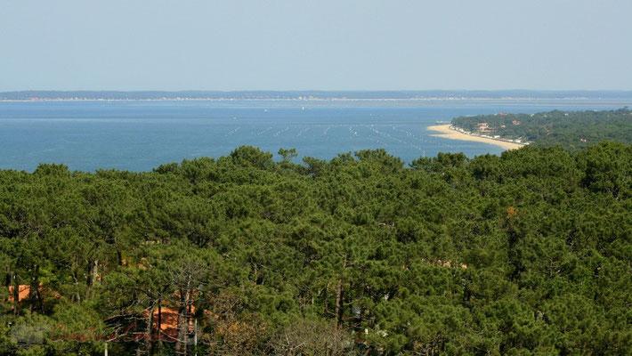 A nulle autre pareille en Europe, la célèbre dune du Pilat domine le paysage maritime et forestier.