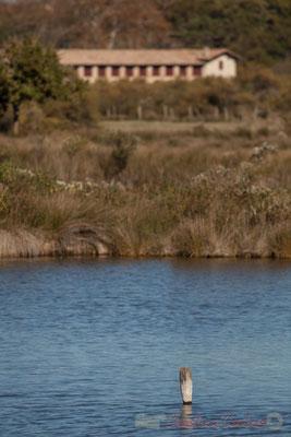 Réservoir et ferme du Domaine de Graveyron, Audenge, espace naturel sensible de Gironde