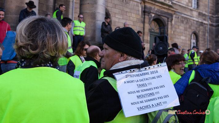 """""""A mort la dictature des taxes !!! Nous ne sommes pas des moutons !!! Nous ne sommes pas des vaches à lait !!!"""" Manifestation nationale des gilets jaunes. Place de la République, Bordeaux. Samedi 17 novembre 2018"""