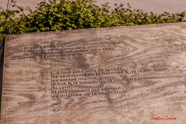 Plusieurs blocs pyrogravés sont posés ça et là. Visite de l'Île Nouvelle, Gironde. 06/05/2018